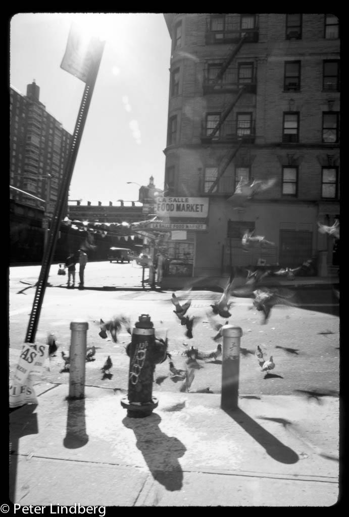 Lasalle Street NYC